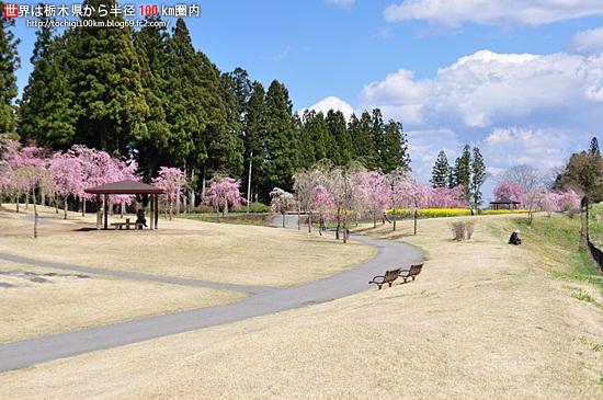 関東アスレチック【東京・神奈川・埼玉・千葉・栃木・茨城・群馬】