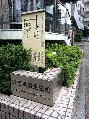 キワモノ系博物館
